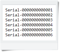 Txt file format for importing serial number